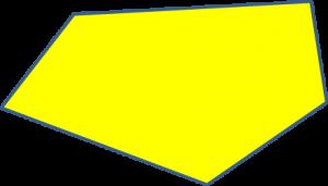 Form 9